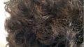 髪がパサパサ・・・くせ毛の宿命どう乗り切る?!